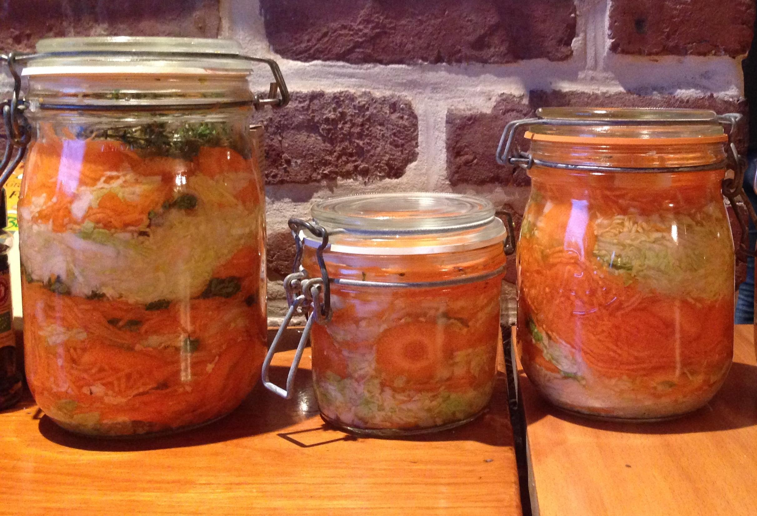 légumes lacto-fermentés vegetarien probiotique nathalie wheatley