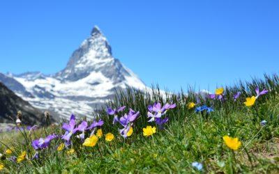 «La montagne, ça vous soigne !»